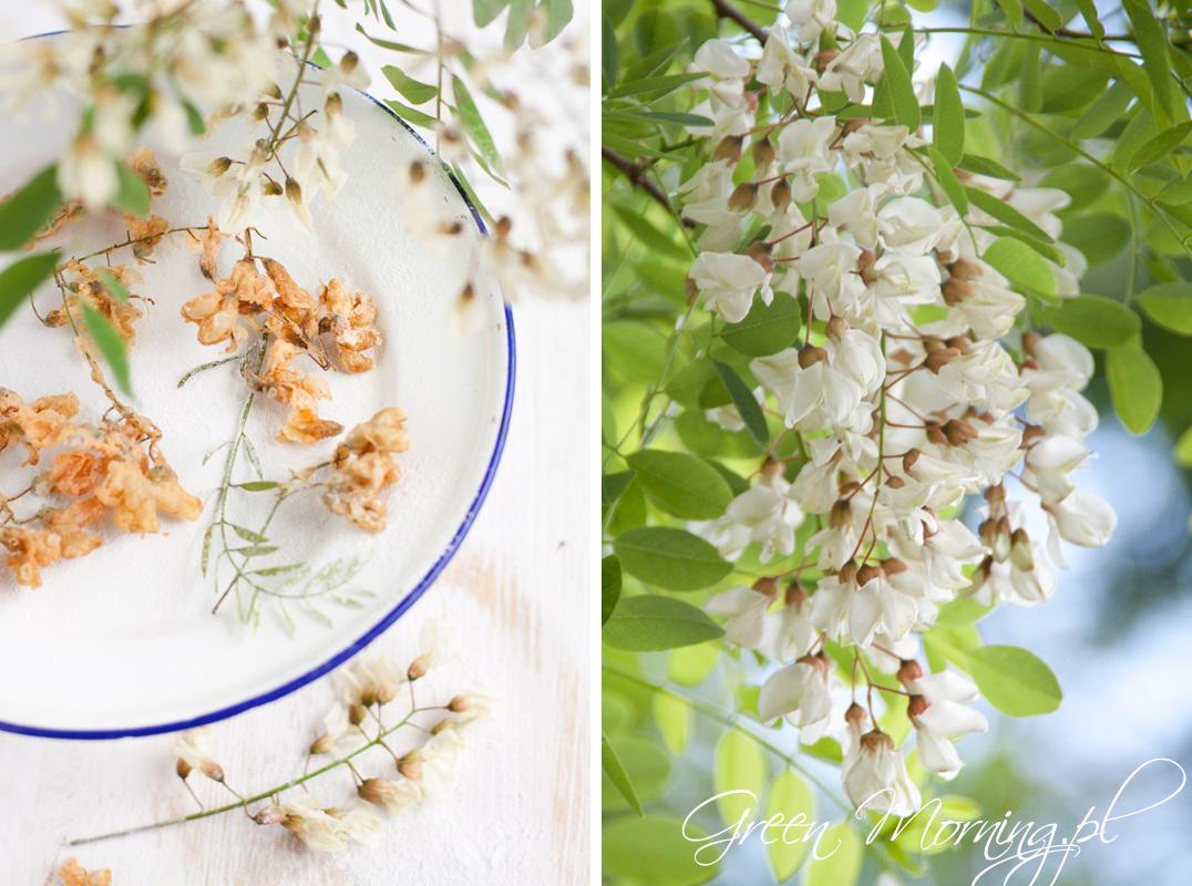kwiaty akacji w tempurze