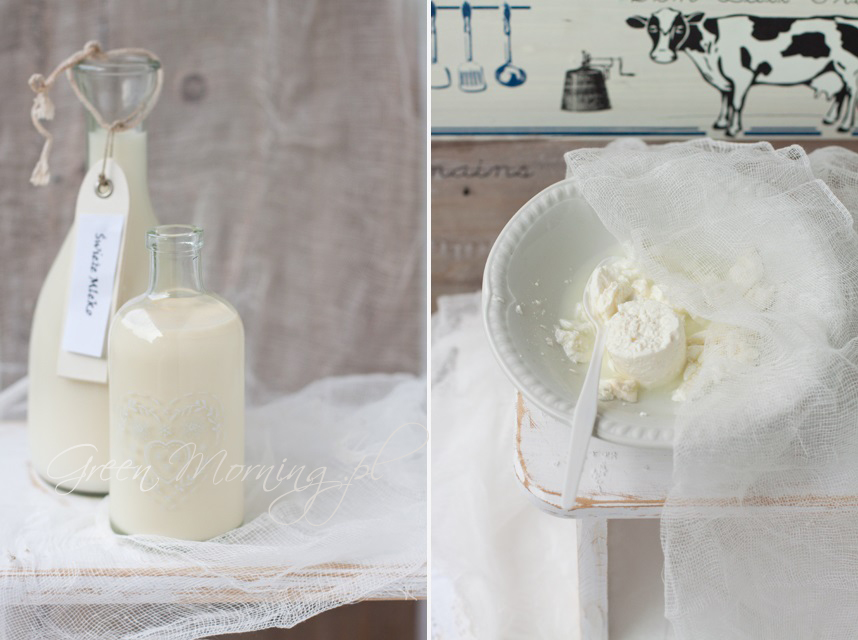 mleko, twaróg, biały ser