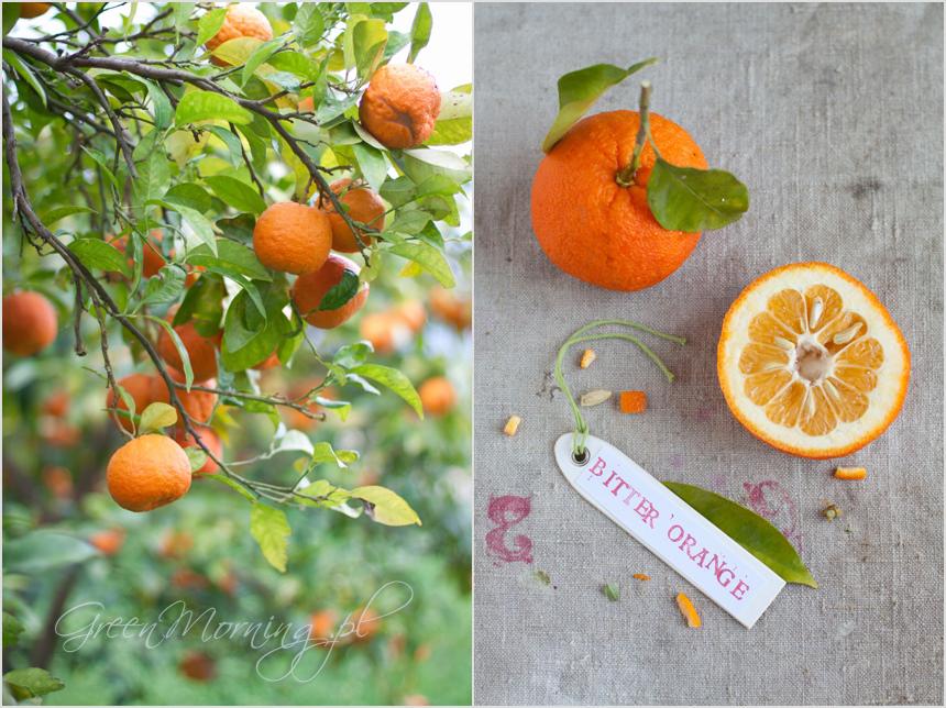 gorzka pomarańcza bitter orange