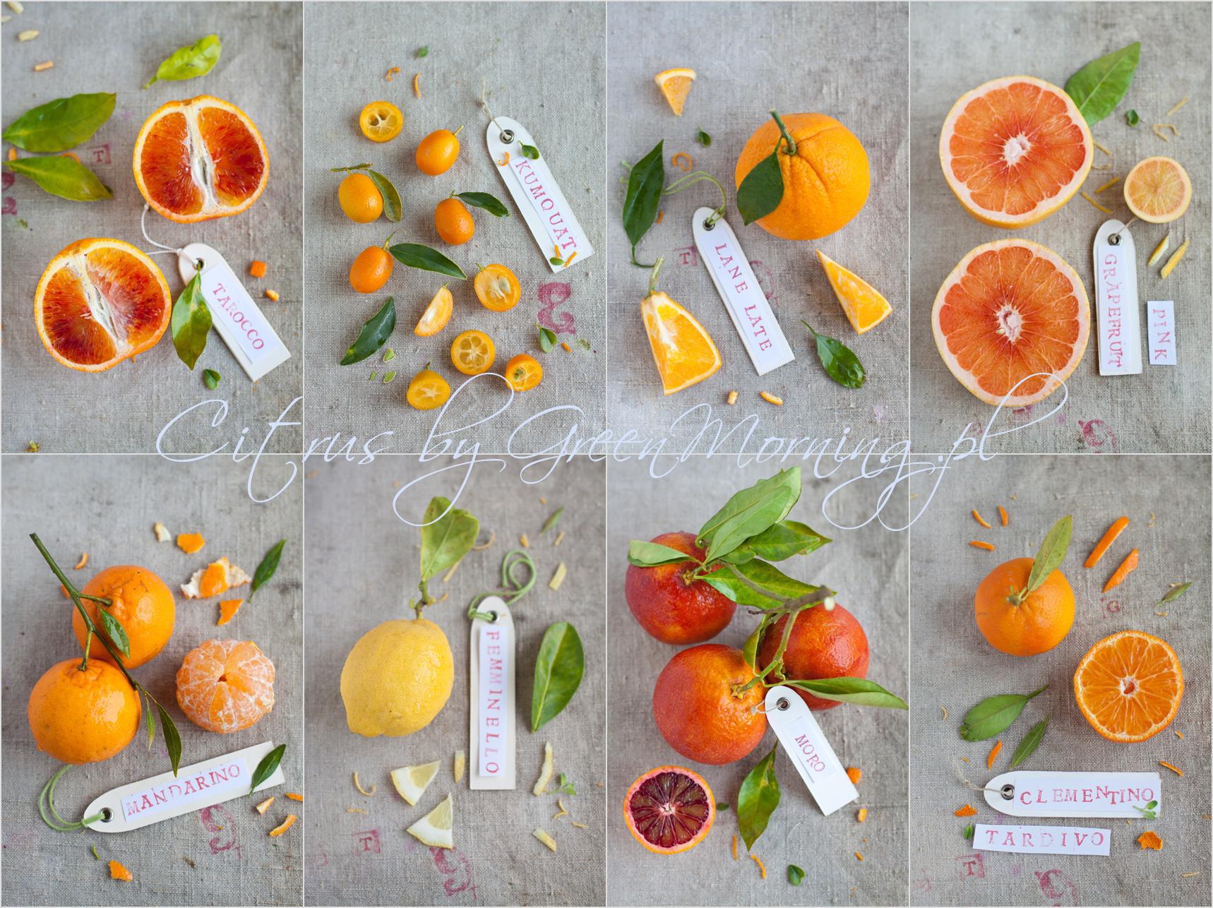 different citrus fruits , odmiany cytrusów pomarańczy