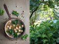 Zupa z jarmużem i jarmużowa sesja dla magazynu Moje Gotowanie